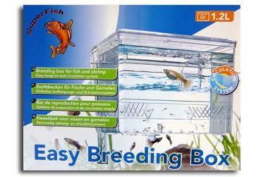 Aquarium Aufzuchtbecken Zuchtaquarium Fische Krebse Garnelen
