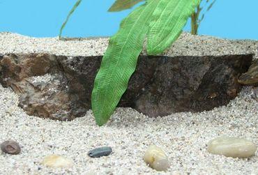 Aquarium Terrasse L Dekoration 38x8cm  – Bild 3