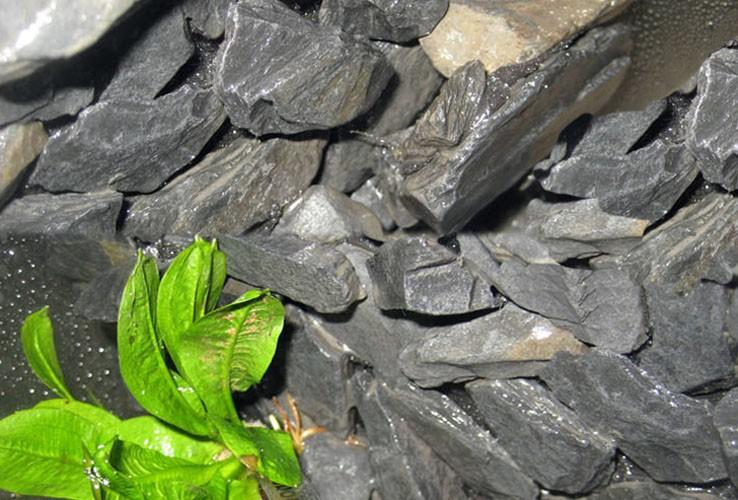 Schiefer platten grau schwarz deko 1 3 cm 1kg aquaristik for Schiefer deko