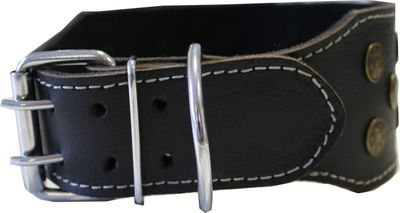 dog collar real leather 45-54cm in black – image 2