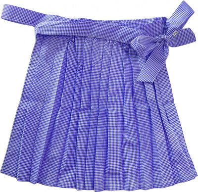 Apron For Mini Dirndl ,Traditional Apron, Colour: Blue Checkered – image 2