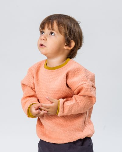 MERINO PULLOVER (WAFFLE STRUCTURE KNIT) – image 1