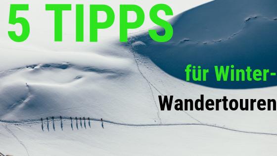 5 Tipps