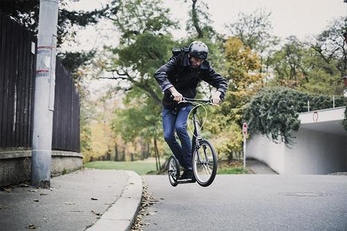 "Yedoo Scooter Rodstr Alu green/black 20""16"" Kickbike Dogscooter Tretroller Erwachsene – Bild 5"