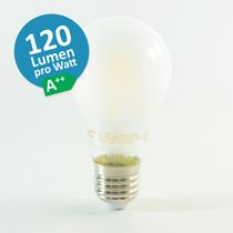 LED Birne Filament E27 A60 5W Warmweiss 600lm 300° satiniert A++