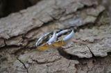 1 Paar Trauringe Eheringe 5 mm Rose Bicolor 333 Gold Diamant 0,02 ct  001