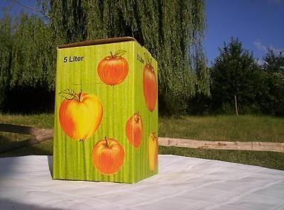 bag-in-box/50stueck-10-liter-bag-in-box-karton-in-apfeldekor