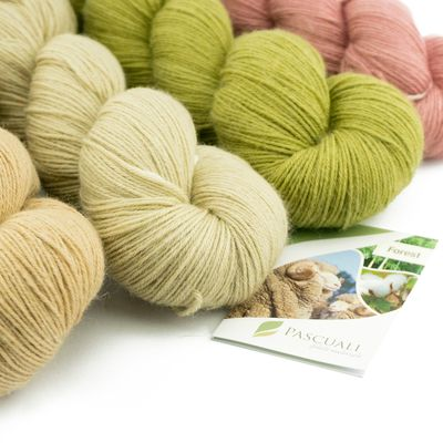 100g Pascuali Forest | 70% merino superwash, 15% bamboo, 15% cotton