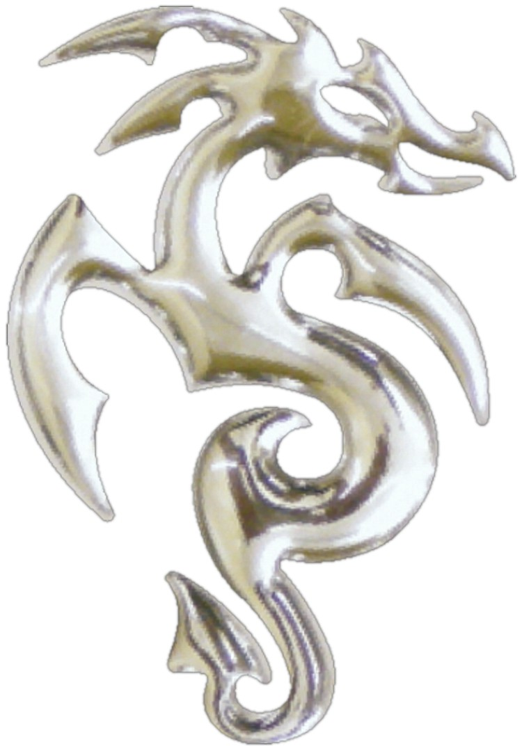 3D-Chrome-Sticker Drache 50 x 35 mm
