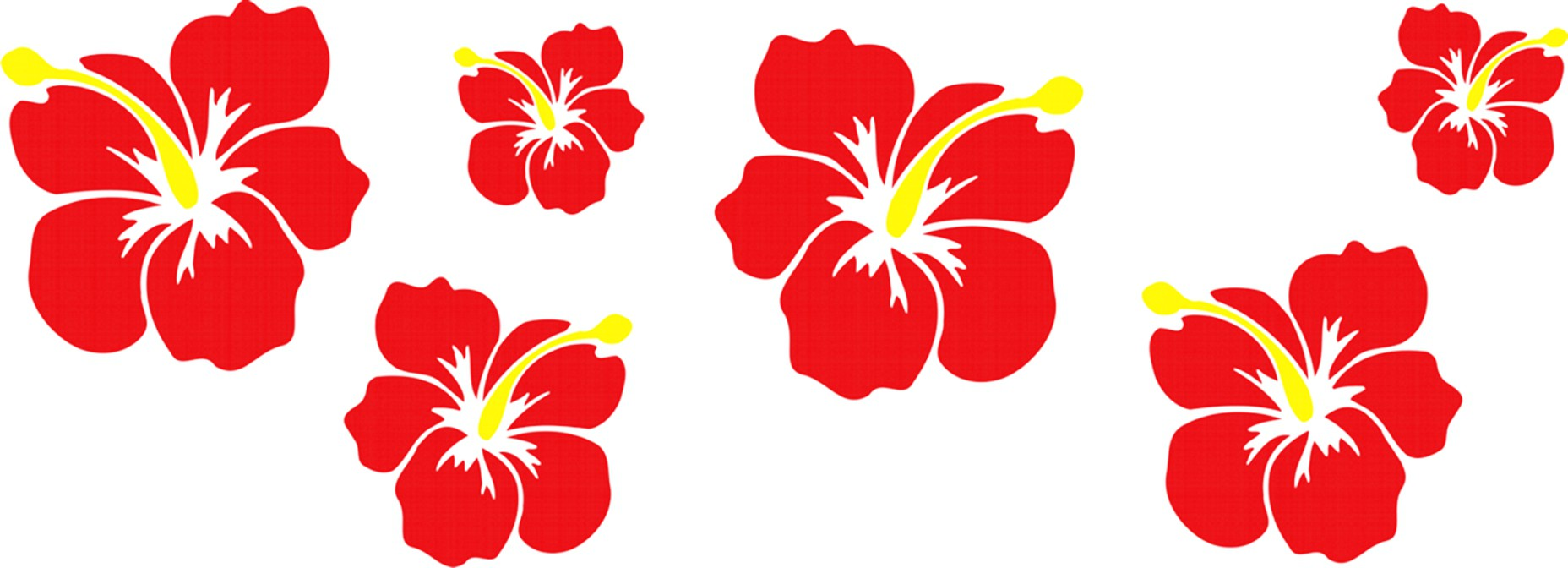 Sticker hibiscus blossoms-set 490 x 160 mm – Bild 1