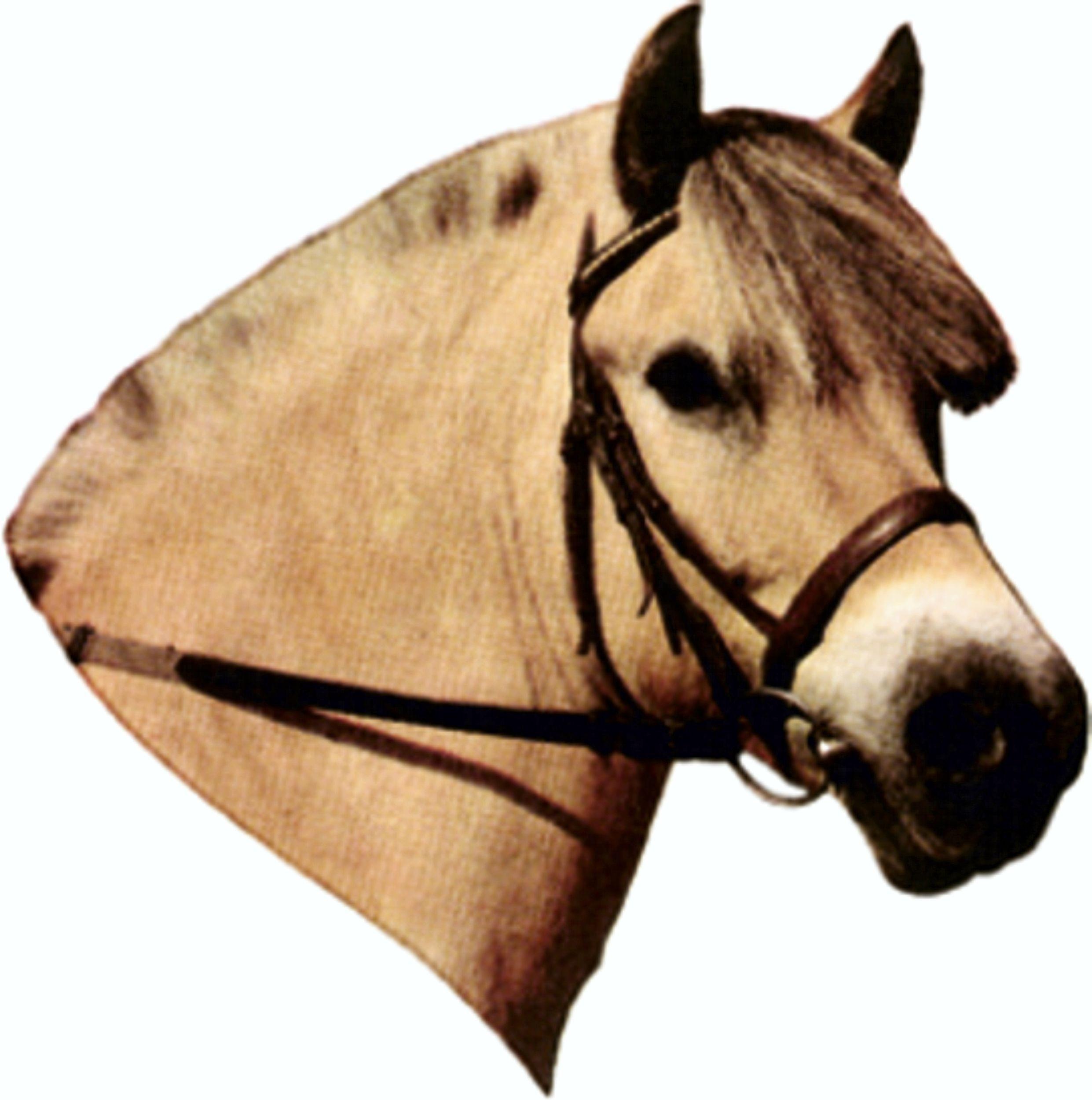 Autocollant cheval du fjord 125 x 110 mm – Bild 1
