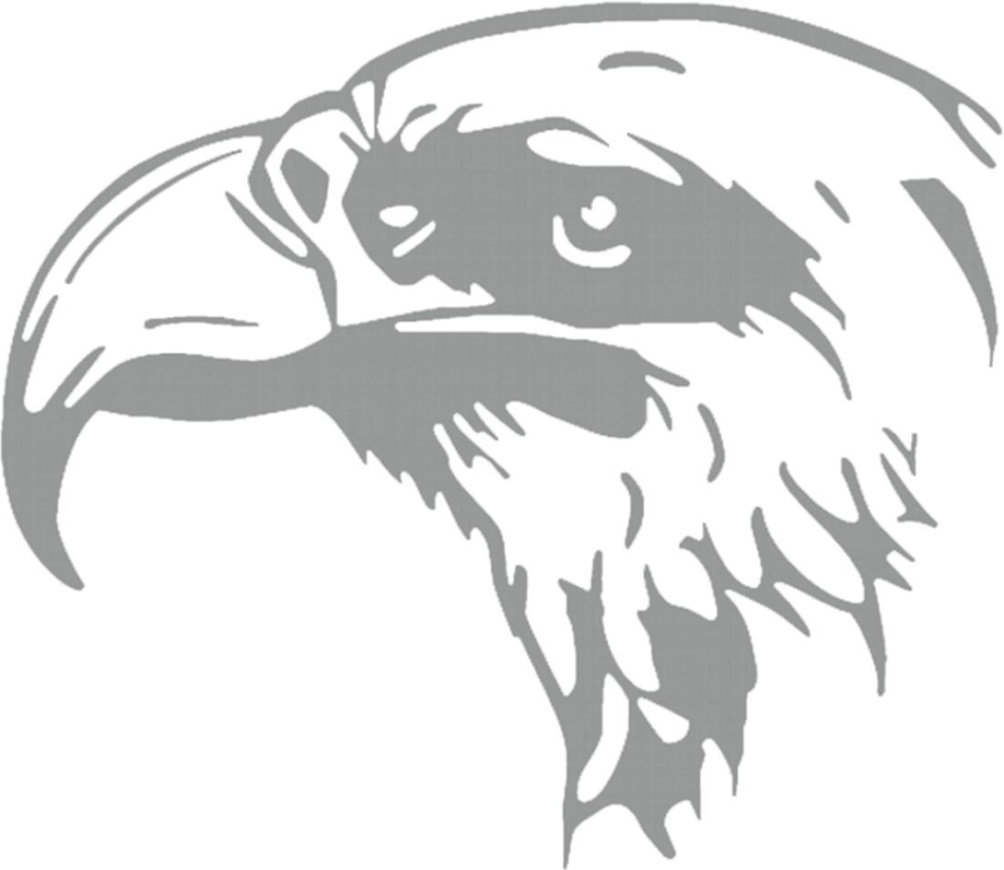 Aufkleber Car-Tattoo Adler – Bild 1