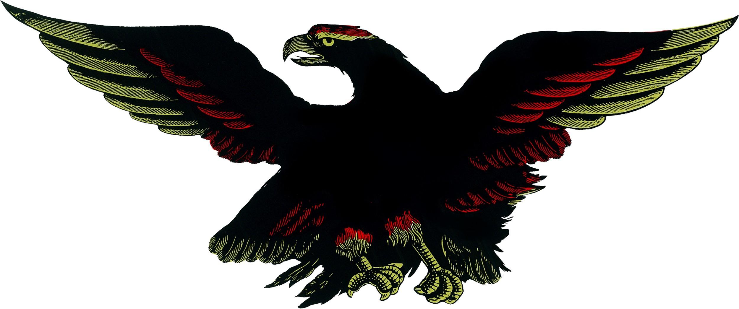 Aufkleber Adler schwarz/rot/gold 310 x 210 mm – Bild 1