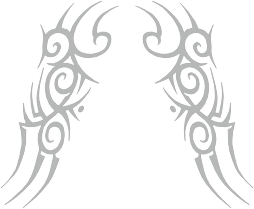 Tatous rétroviseur et voiture celtic