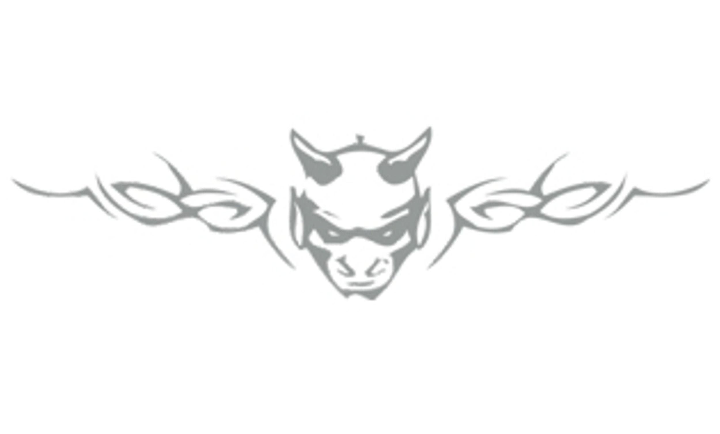Tatou vitre et voiture Devilhead argent 200 x 810 mm 001