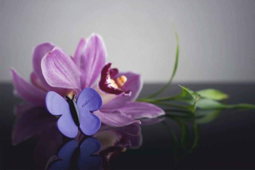 Marta la farfalla parfum d'ambiance odeur: black orchid – Bild 2