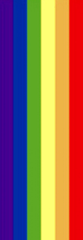 Autocollant arc-en-ciel 40 x 110 mm – Bild 1