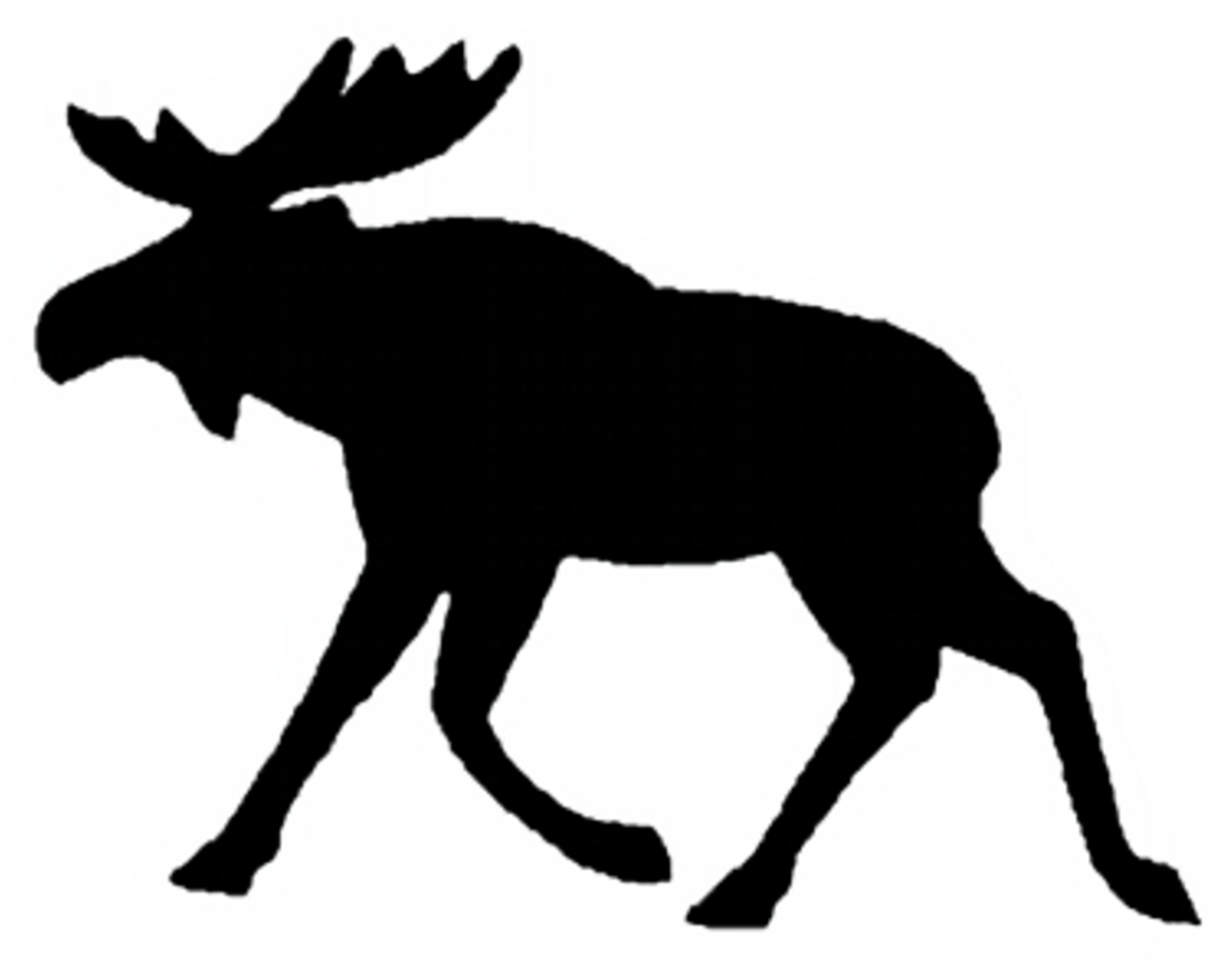 Sticker moose dimension 60 x 80 mm – Bild 1