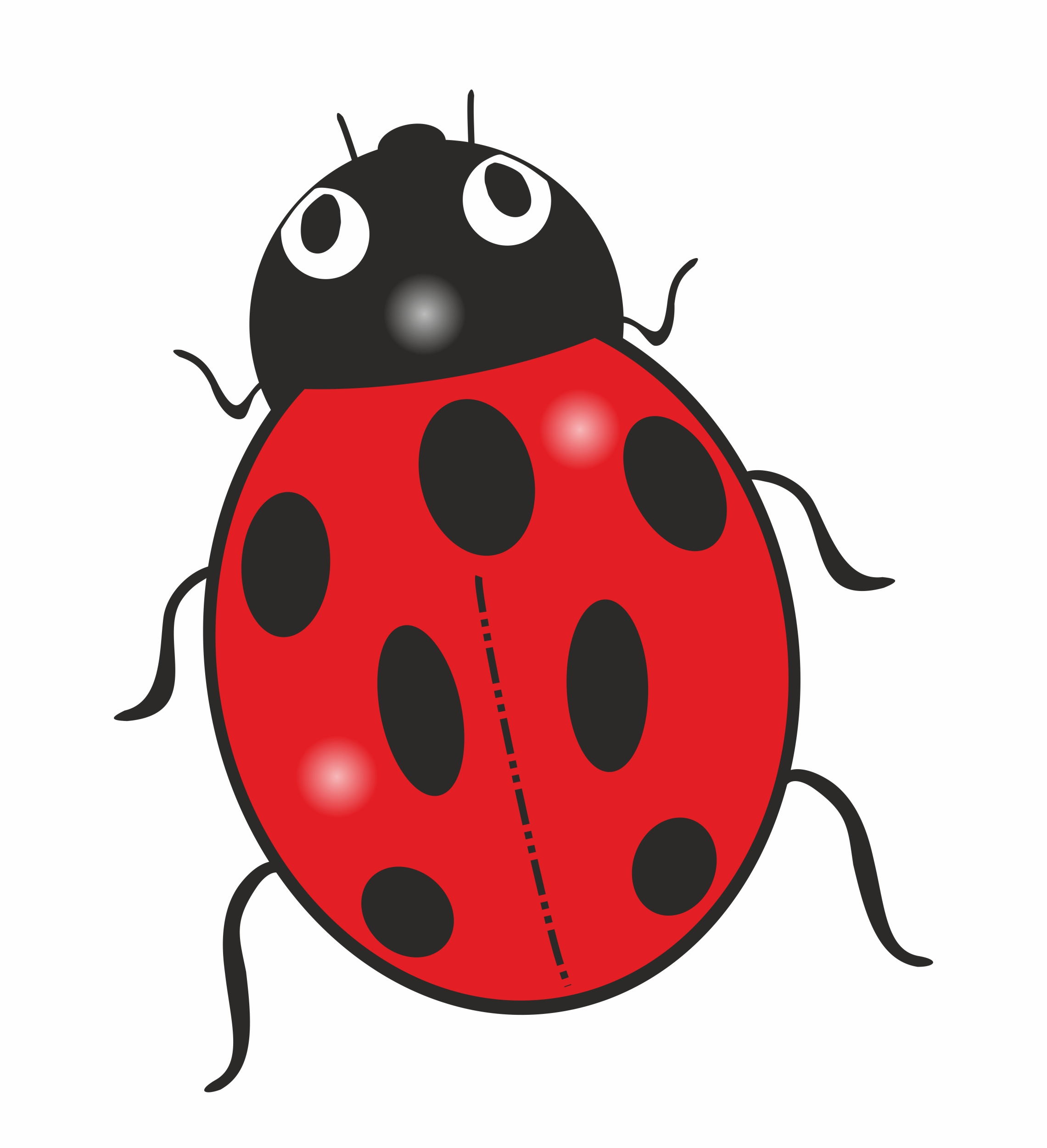 Sticker beetle: size 60 x 50 mm – Bild 1