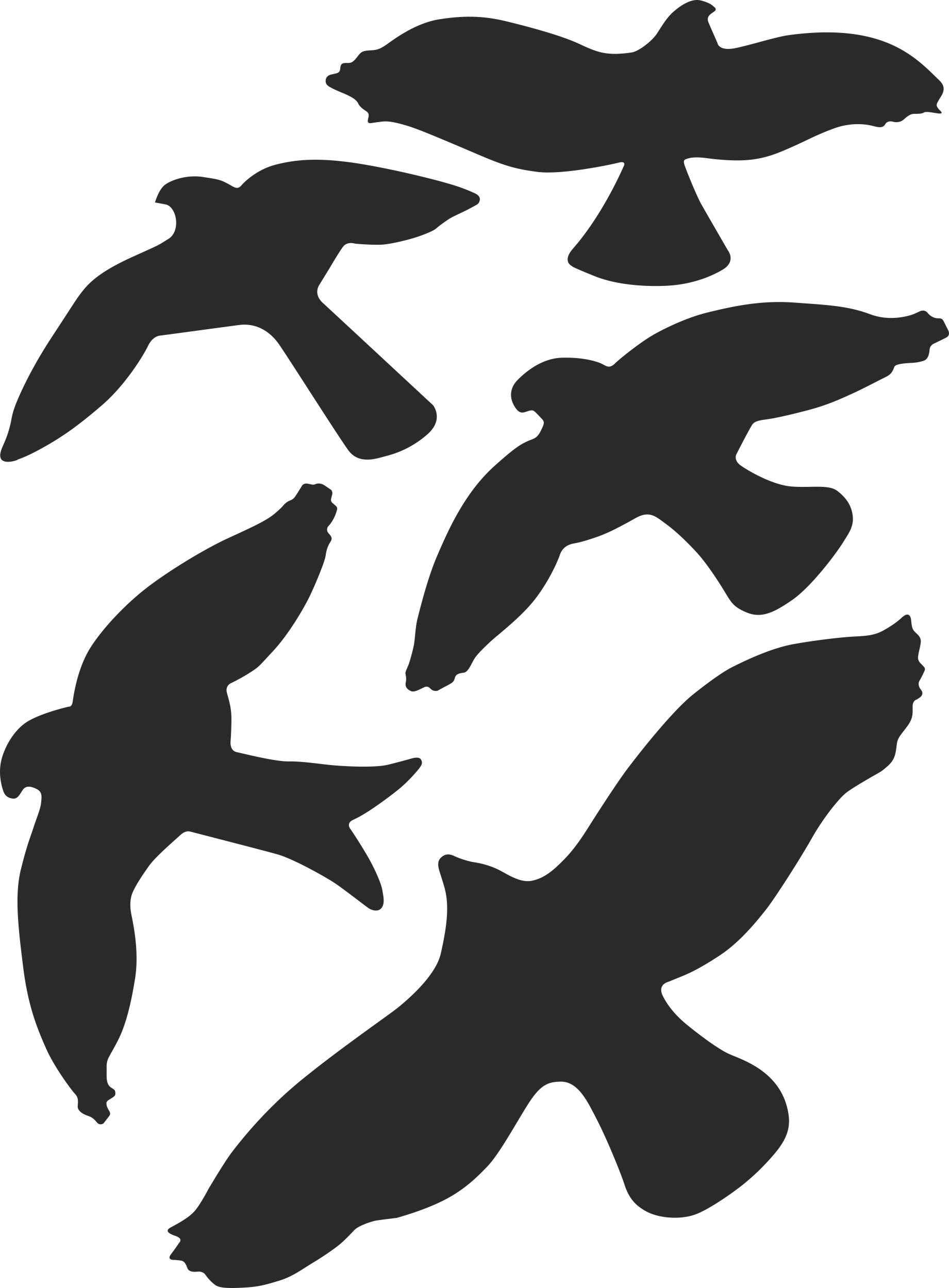 Aufkleber Kontur Vogel-Sortiment 5 Stück – Bild 1