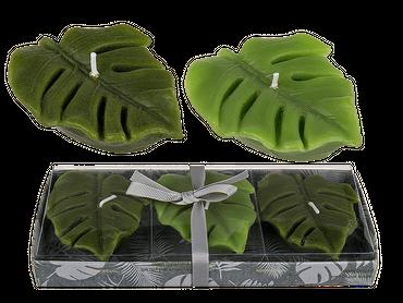 Kerze, Blätter, ca. 8 x 6 x 2 cm, 3er-Set in PVC-Box