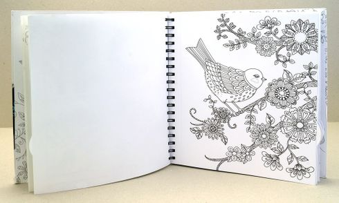Chameleon Malbuch 'Loris Art Garden Coloring Book' – Bild 2