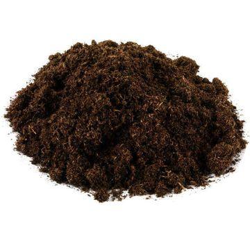 Mykorrhiza spezial Buche, 50ml