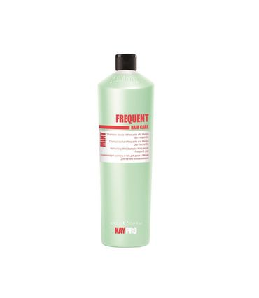 Kay Pro Frequent Hair Care Mint 2 in 1 Shampoo und Duschgel 1000 ml