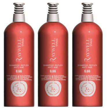 3er Raywell Vivace Shampoo Reflex Anti Age 6.66 Tief Rot 1000 ml