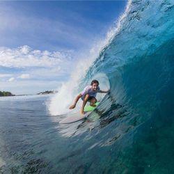 Surfboard TORQ Epoxy TET 6.3 Fish Lines – Bild 5