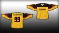 Deutschland Eishockey Fan Trikot Gold / Schwarz 001