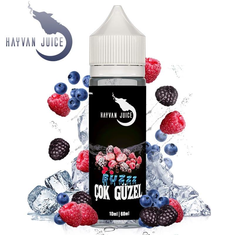 Hayvan Juice Cok Güzel Longfill Liquid 10 ml für 60 ml – Bild 1