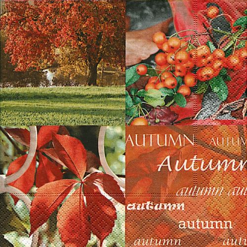 Lunch Servietten Herbst bedruckt - DESIGN AUTUMN NATURE