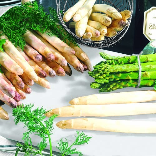 Lunch Servietten bedruckt - DESIGN ASPARAGUS MIX