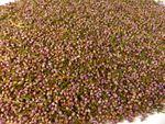 Erikablüten (Heidekrautblüten) Naturideen® 100g