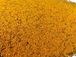 Orangen Pfeffer Gewürzzubereitung Naturideen® 100g