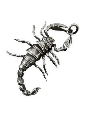 Stainless Steel Scorpion Pendant with cotton band – picture 2