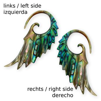 Mother of Pearl / Paua Abalone Shell Spiral Expander - Angel Wing – picture 2