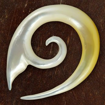 Shell Spiral Stretcher - Whale Fin