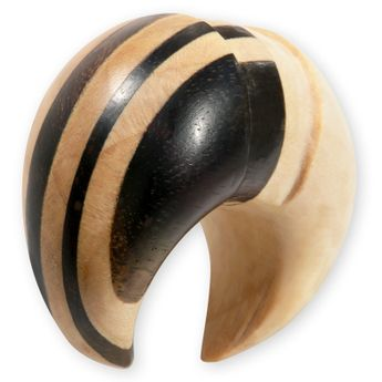 Wood Ear Spiral Stretcher - Bicolor – picture 1