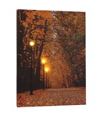 Leinwandbild mit LED-Beleuchtung 30 x 40 cm Wandbild Wald Herbst mit 3 Laternen