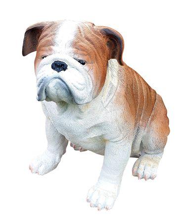 Englische Bulldogge Deko Figur Gartenfigur Tierfigur Hund sitzend lebensecht  – Bild 3