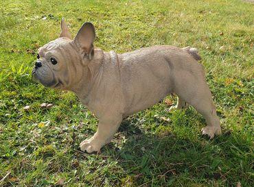 Französische Bulldogge Deko Figur Gartenfigur Tierfigur Hund stehend lebensecht  – Bild 2