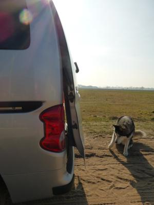 Lufty® - Nissan - Evalia  – Bild 5