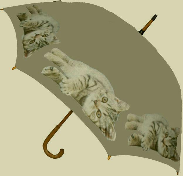 Regenschirm Stockschirm Kätzchen grau- braun mit Holzgriff braun 001