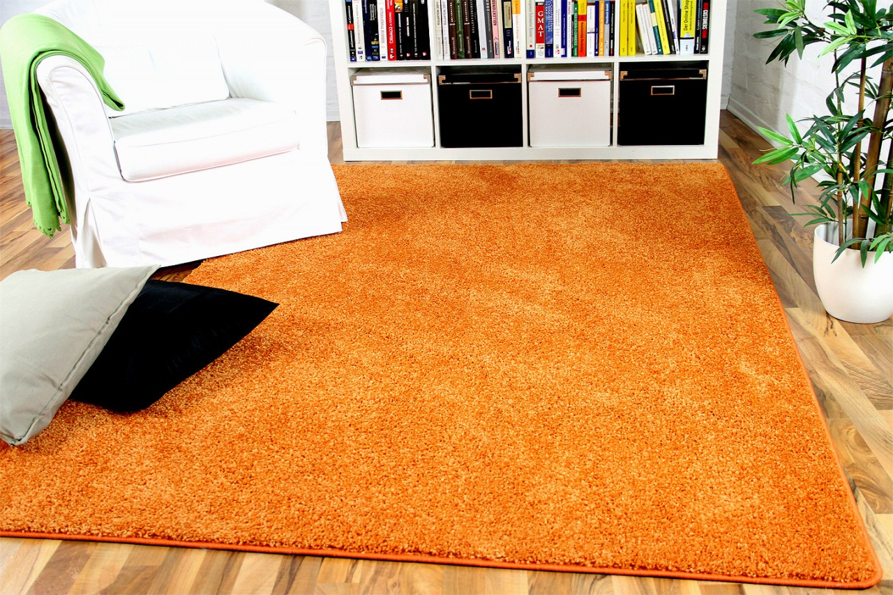 hochflor velours teppich mona orange teppiche hochflor langflor teppiche orange rost und terrakotta. Black Bedroom Furniture Sets. Home Design Ideas