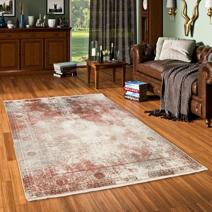Designer Teppich Nia Vintage Rost Bordüre