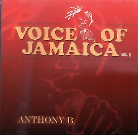 Anthony B - Voice of Jamaica Vol. 2
