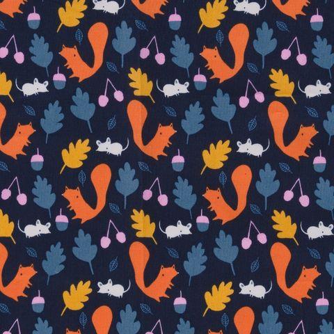 Popeline Bio Baumwolle GOTS Eichhörnchen orange auf dunkelblau