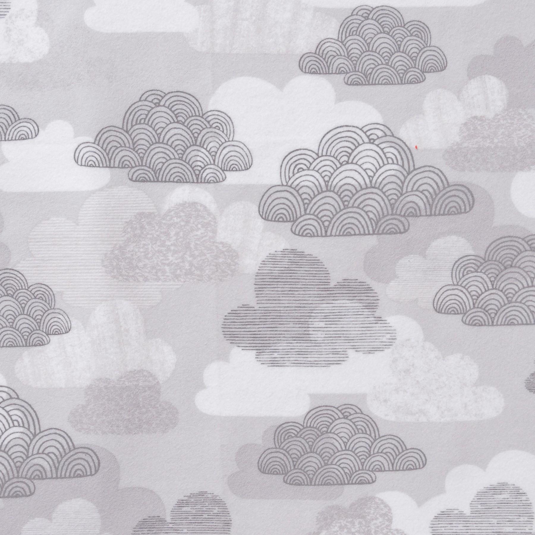 Bio Baumwolle Flanell Wolken grau